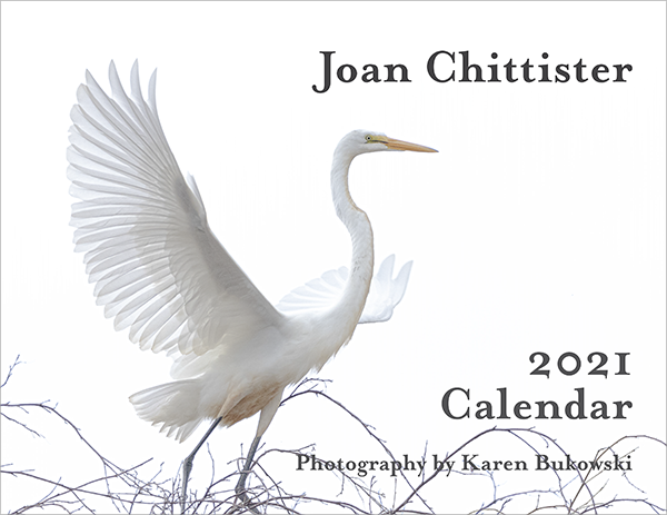 2021 Joan Chittister Calendar Cover